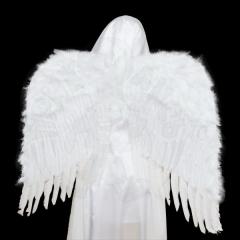 Крылья «Ангела»