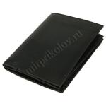 Бумажник С огнем (кожа)