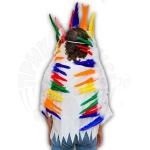 Перья индейского вождя Апачи