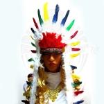 Перья индейского вождя Каманчи
