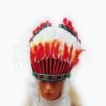 Перья индейского вождя Ацтеков